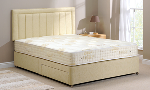 Signatory divan bed the bed butler for The range divan beds